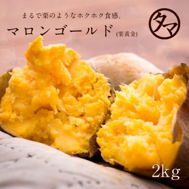 【送料無料】鹿児島産栗黄金芋 (くりこがね) マロンゴールド 2kg幻となりつつある白さつまいも♪芋焼酎ブームで最近では滅多にお目にかか