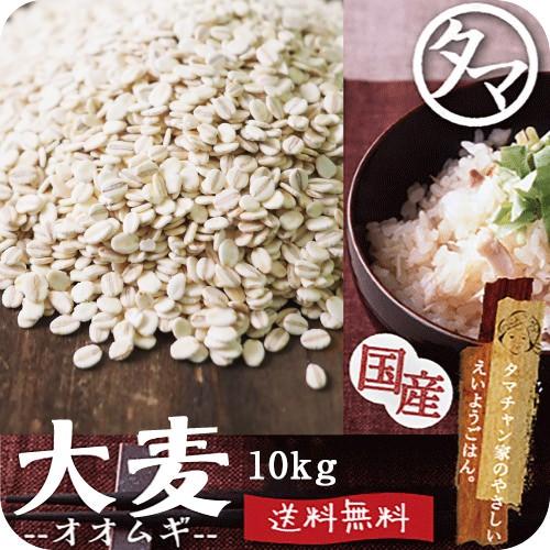 【送料無料】九州産 大麦(押し麦)10kg (250g×40袋)食べる食物繊維・βグルカンの宝庫な食材。注目される第6の栄養素とされる食物繊維