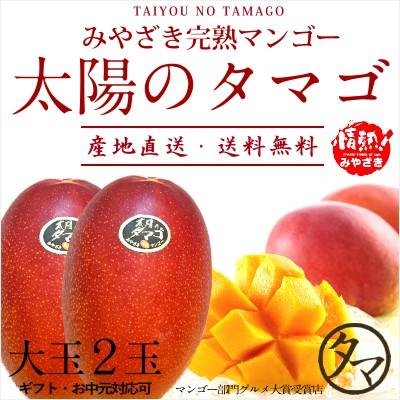 太陽のタマゴ 大玉2L・2玉 最高級 フルーツ マンゴー 宮崎 果物 香り 糖度 プレミアム ギフト プレゼント 父の日 送料無料 のし対応可能