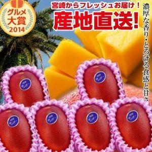 宮崎完熟マンゴー中玉6玉 送料無料 宮崎 南国 フルーツ 果物 ギフト 母の日 父の日 贈り物 プレゼント 完熟 マンゴー 地元 お中元 お取り