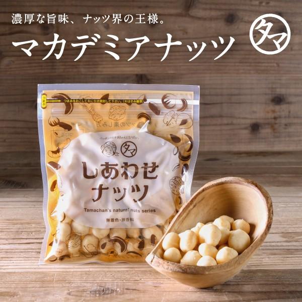 マカデミアナッツ 100g(無添加 無塩 ロースト 素焼き) お試し ナッツ おやつ 人気|ナッツ 無塩 マカダミア 食品 健康食品 おやつ お菓子