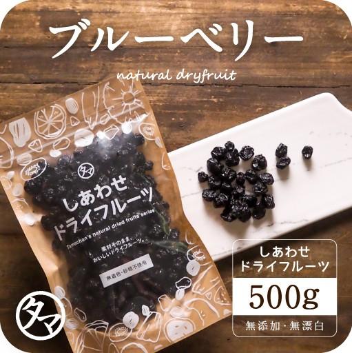 【送料無料】ドライブルーベリー(500g/アメリカ産/無添加)有機JAS認定 オーガニック 爽やかな酸味と豊富なアントシアニンが特徴 スイー