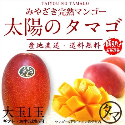 【送料無料】太陽のタマゴ 大玉2L・1玉 最高級 フルーツ マンゴー 宮崎 果物 香り 糖度 プレミアム ギフト お中元 父の日 送料無料 のし