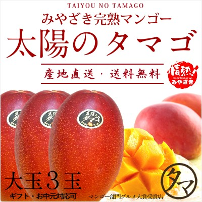 太陽のタマゴ 大玉2L・3玉 最高級 フルーツ マンゴー 宮崎 果物 香り 糖度 プレミアム ギフト プレゼント 父の日 送料無料 のし対応可能