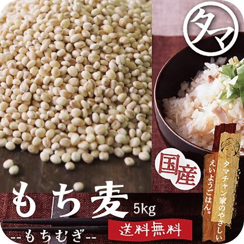 【送料無料】もち麦5kg 無添加 30年度産/愛媛県・香川県産 もっちりプチプチとした食感と食物繊維が豊富!