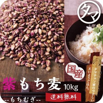 紫もち麦10kg ダイシモチ 無添加 30年度九州産 もち麦ごはん 食物繊維 高タンパク β-グルカン ポリフェノール 業務用 送料無料