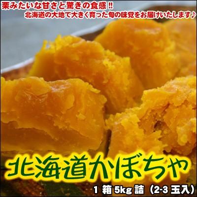 かぼちゃ 北海道 1箱5kg(2-3玉入) 送料無料 ※沖縄は送料別途加算