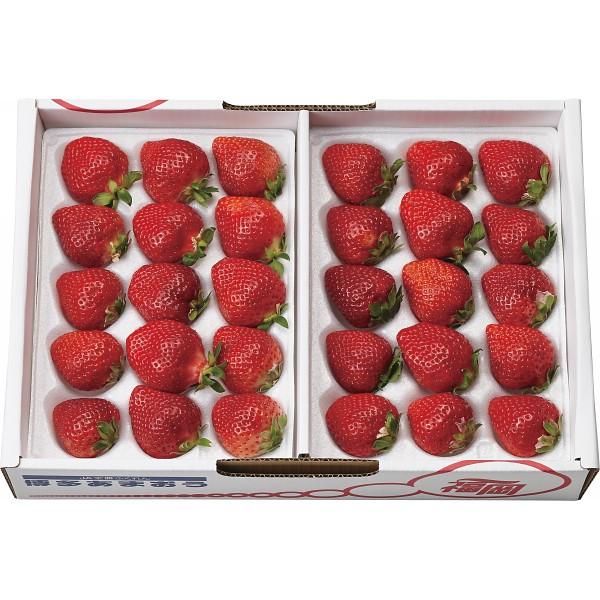 お歳暮 フルーツ ギフト 送料無料 福岡県産 あまおういちご(840g) / 果物 フルーツ 国産 ギフト 贈り物 セット 詰め合わせ お取り寄せ 内