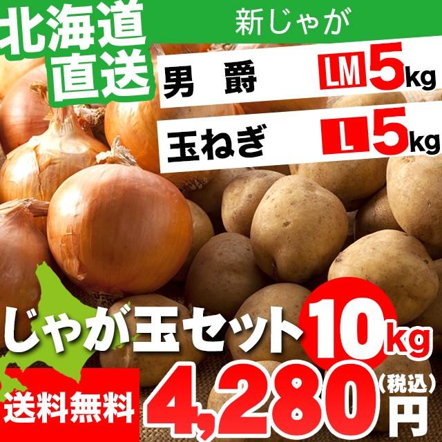 今季出荷開始! 新じゃがいも 送料無料 北海道産 じゃが玉セット 男爵 5kg(LMサイズ)&玉ねぎ5kg(Lサイズ) 合計10kg / 10キロ 10キ