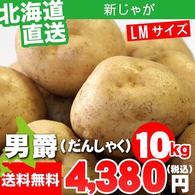 今季出荷開始! 新じゃがいも 送料無料 北海道産 じゃがいも 男爵薯(LMサイズ)1箱10キロ入り / 10キロ 10kg 10kg 男爵 いも イモ