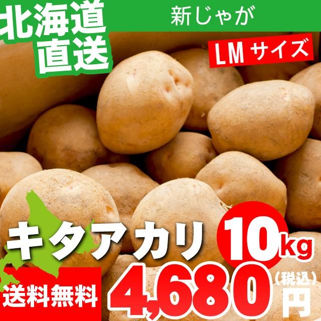 今季出荷開始! 新じゃがいも 送料無料 北海道産 じゃがいも キタアカリ【M〜L混合サイズ】1箱10キロ入り / 10kg 10キロ 10kg き