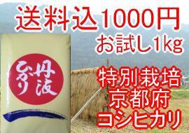 【令和2年産】送料込1000円お米マイスター・お米アドバイザーのおすすめ米特別栽培米 京都府産丹波ひかりお試し1kg