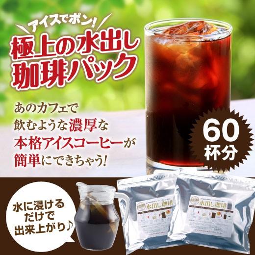 【澤井珈琲】送料無料 アイスでポン!コーヒー専門店の極上の水出し珈琲パック大入り福袋 2セット(1袋10パック入り×2)