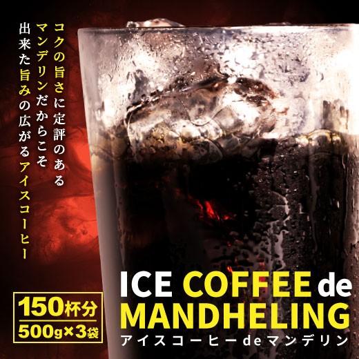 【澤井珈琲】送料無料!コーヒー専門店の アイスコーヒーdeマンデリン 大入り 150杯分福袋(コーヒー/コーヒー豆/珈琲豆/アイスコーヒー