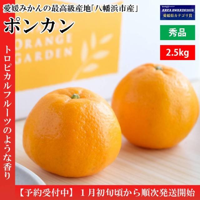 みかん 秀品 2.5kg ポンカン 濃厚 甘い さわやか 愛媛産 南国風 良い香り プレゼント