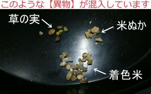 訳あり品 返品交換不可 【小鳥のエサにお勧め】訳あり着色米 お米 10kg 色彩選別機ではじいた米 異物混入の可能性あり