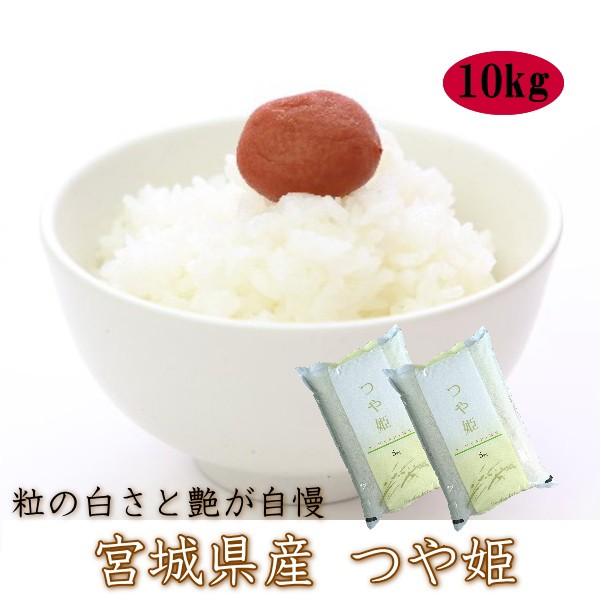 白米 10kg 送料無料 令和2年度 宮城県 登米産 つや姫 白米 10kg (5kg×2) デザインポリ袋仕様 【おうちごはん応援特価】