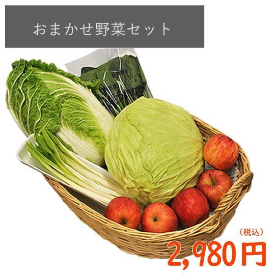 【道の駅ランキング2位のサンピュアで大人気】 おまかせ 野菜 セット