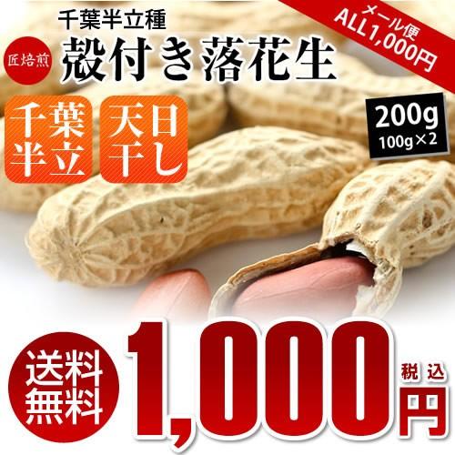 送料無料 新豆 令和元年産 【ALL¥1000】 千葉県産 千葉半立 殻つき 落花生 200g(100g×2)※メール便でのお届けとなります。