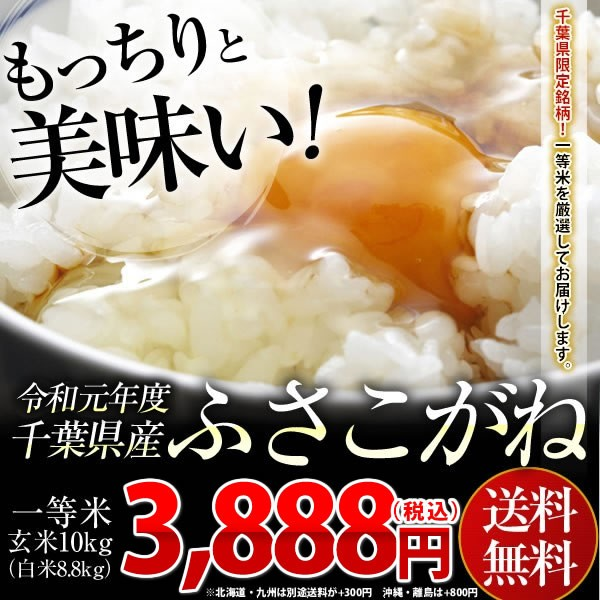 送料無料 安い お米 令和元年 新米 千葉県産 ふさこがね 玄米 10kg (白米8.8kg)※一部地域へのお届けは別途送料が発生