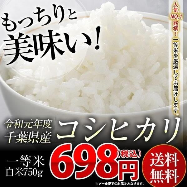 米 お米 送料無料 令和2年産 千葉県産 コシヒカリ 《一等米》 白米 5合(750g)  ※こちらのお米はメール便でのお届けとなります。