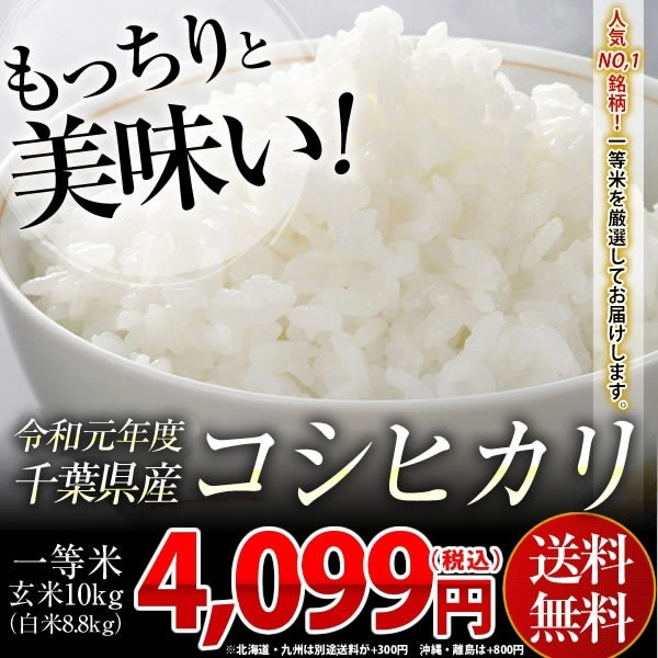 米 お米 送料無料 令和元年 千葉県産 コシヒカリ 玄米 10kg (白米8.8kg)※一部地域へのお届けは別途送料が発生