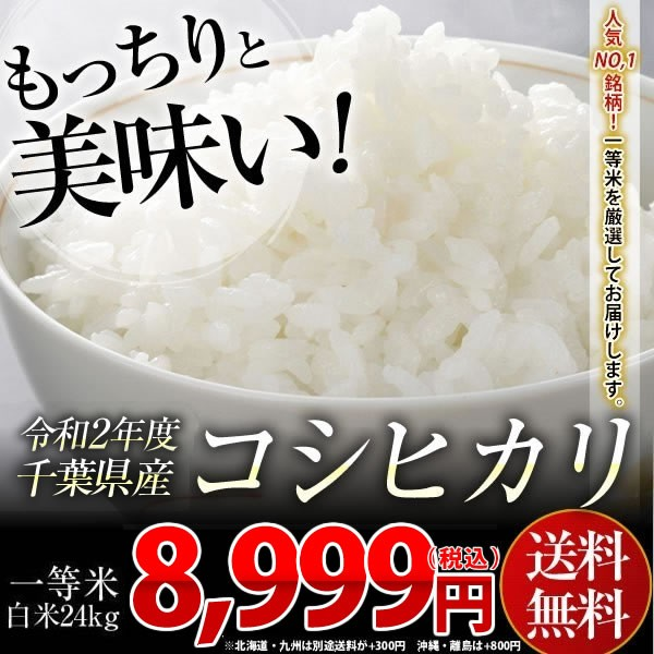 米 お米 送料無料 新米 令和2年 千葉県産 コシヒカリ 白米 24kg (8kg×3袋) 【別途送料加算地域あり】