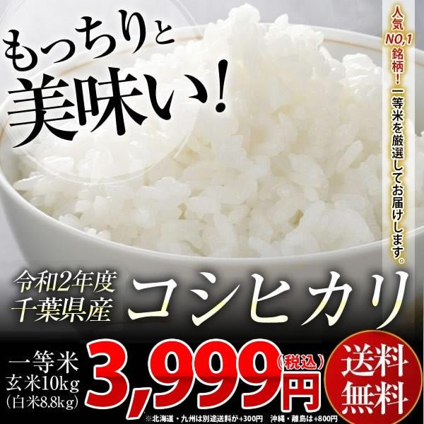 米 お米 送料無料 新米 令和2年 千葉県産 コシヒカリ 玄米 10kg (白米8.8kg)※一部地域へのお届けは別途送料が発生