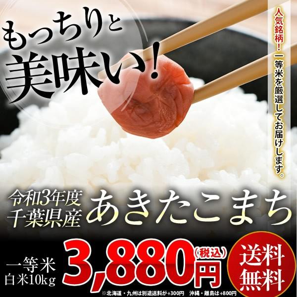 米 お米 送料無料 新米 令和3年 千葉県産 あきたこまち 白米 10kg ※一部地域へのお届けは別途送料が発生