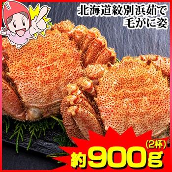 かに 蟹 毛がに 毛蟹 ボイル毛がに ◆ 北海道紋別浜茹で 毛がに姿 2杯(約900g)【送料無料】 / ボイル毛蟹 姿 丸ごと 殻付き ボイル済