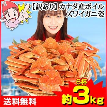 かに 蟹 ずわいがに ボイルずわいがに ◆ 【訳あり】カナダ産 ボイルズワイ姿6杯(約3kg)【送料無料】 / 姿 丸ごと かにみそ 蟹味噌 殻