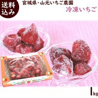 いちご 送料無料 宮城県・山元いちご農園 家庭用 冷凍いちご 1kg(約30個)