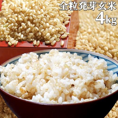 5%還元 【送料無料】大分県産 無洗米 手作り発芽玄米 4kg(1kg真空パック×4袋) 準無農薬(減農薬) スタリオン日田