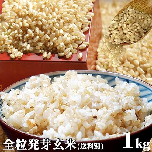 5%還元 大分県産 無洗米 手作り発芽玄米 お試し 1kg(真空パック) 準無農薬(減農薬) スタリオン日田 (送料別)