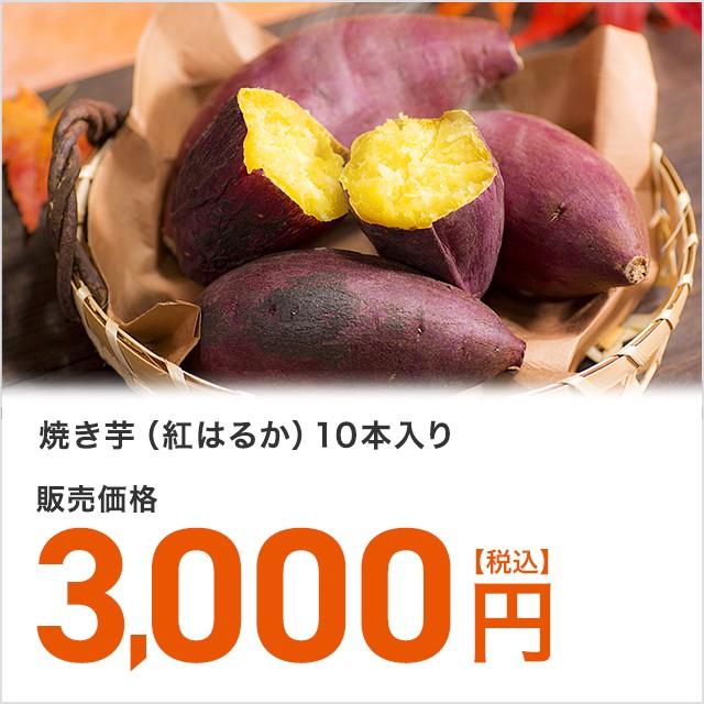 焼き芋 紅はるか 10本入り 常温保存 やきいも イモ 送料無料