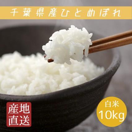 米 白米 10kg 5kg×2袋 令和2年産 ひとめぼれ 本州四国 送料無料