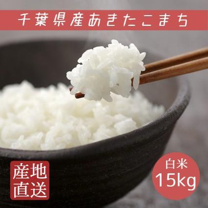 米 白米 15kg 5kg×3袋 令和2年産 あきたこまち 本州四国 送料無料
