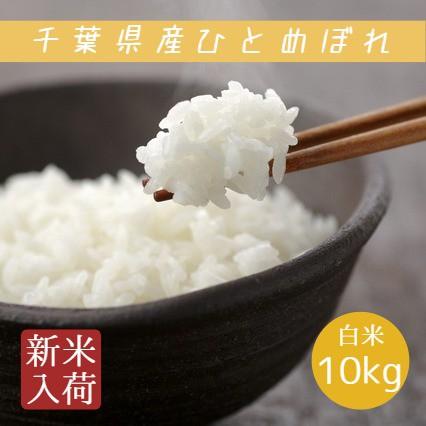新米 米 白米 10kg 5kg×2袋 令和3年産 ひとめぼれ 本州四国 送料無料