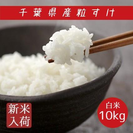 新米 米 白米 10kg 5kg×2袋 令和3年産 粒すけ 本州四国 送料無料