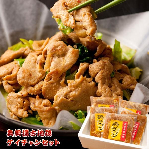 送料無料★奥美濃古地鶏ケイチャンセット(G-KEI-A) 鶏ちゃん お取り寄せ グルメ ギフト