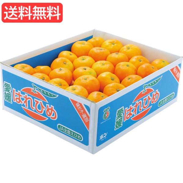 お歳暮 送料無料 愛媛県産 はれひめみかん(5kg) 旬のフルーツギフト 人気 おすすめ [ 産直 ミカン フルーツ 果物 詰合せ ギフト