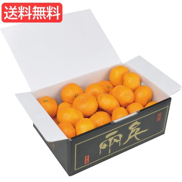 お歳暮 送料無料 愛媛県産 日の丸みかん(2.5kg) 旬のフルーツギフト 人気 おすすめ [ 産直 ミカン フルーツ 果物 詰合せ ギフ