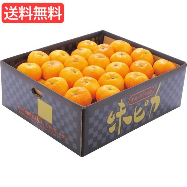 お歳暮 送料無料 愛媛県産JAにしうわ 味ピカみかん(5kg) 旬のフルーツギフト 人気 おすすめ [ 産直 ミカン フルーツ 果物 詰合
