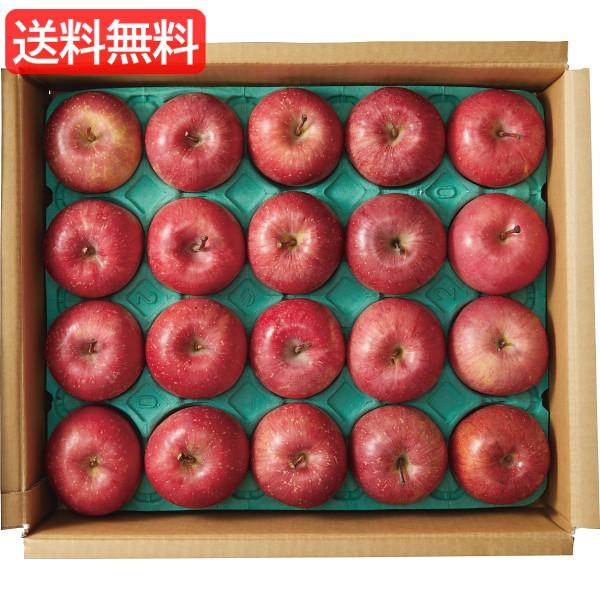 お歳暮 送料無料 青森県産 サンふじりんご(5kg) 旬のフルーツギフト 人気 おすすめ [ 産直 りんご 林檎 フルーツ 果物 詰合せ ギ
