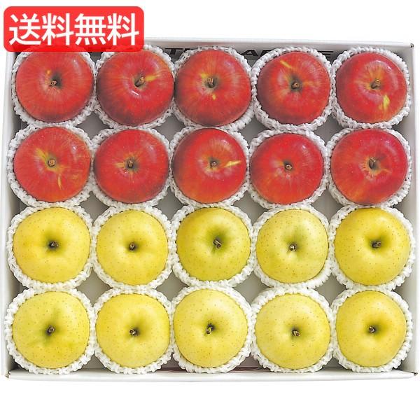 お歳暮 送料無料 青森県産 サンふじ&王林(5kg) 旬のフルーツギフト 人気 おすすめ [ 産直 りんご 林檎 フルーツ 果物 詰合せ ギ