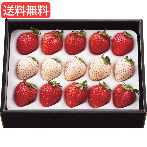 お歳暮 送料無料 紅白いちご(計200g) 旬のフルーツギフト 人気 おすすめ [ 産直 苺 いちご フルーツ 果物 詰合せ ギフト セット