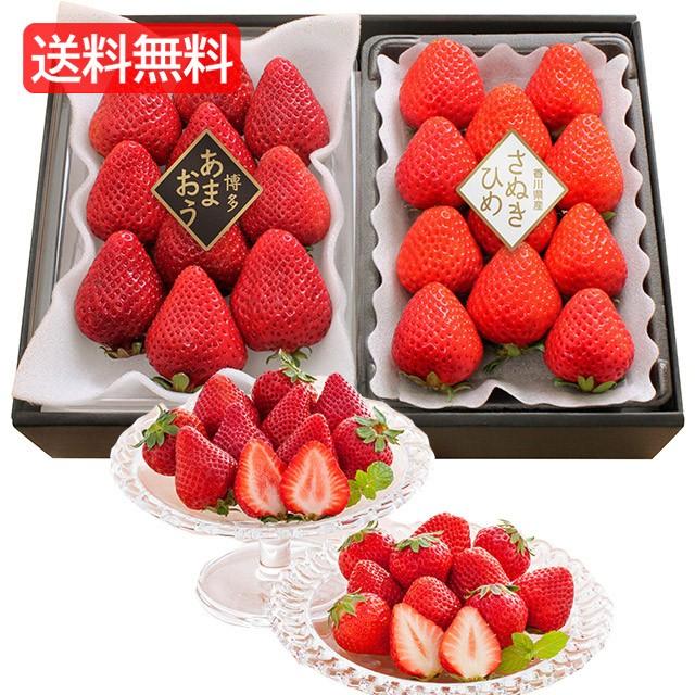 [ 送料無料 お歳暮 メーカー直送] (博多あまおう・さぬきひめ) 人気いちごの味くらべ H-IT < 2種 各約270g > [ 苺 イチゴ果