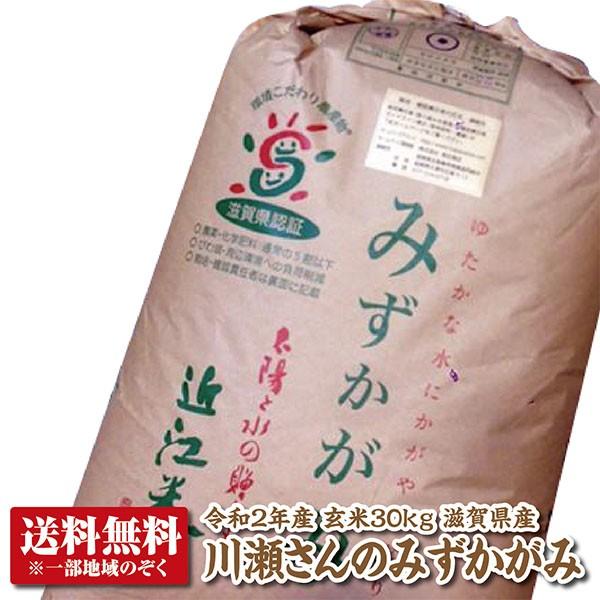 【新米】【令和2年産】【送料無料】滋賀県産川瀬さんのみずかがみ玄米30kg【THE GRAND認定米】【特別栽培米】