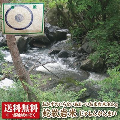 【令和2年産】【送料無料】蛇紋岩米玄米30kg【コシヒカリ】【こしひかり】【じゃもんがんまい】