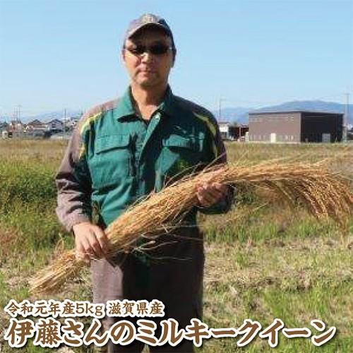【令和元年産】滋賀県産伊藤さんのミルキークイーン5kg【特別栽培米】【生産者限定米】